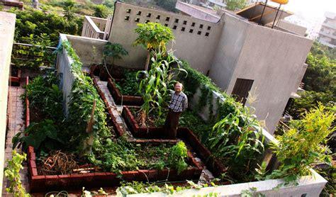 Pune Terrace Garden Balcony Terrace And Wall Vegetable Garden On Terrace India