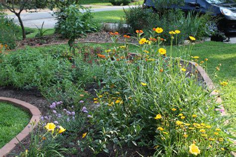 creating a butterfly habitat garden in houston