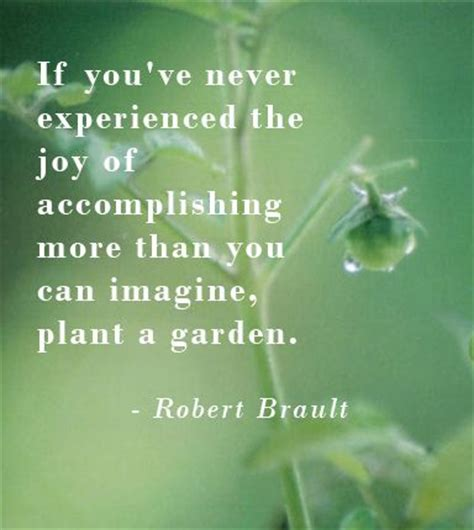 ca state flower quotes gardening flower and vegetables quot if you ve never experienced the joy of accomplishing more