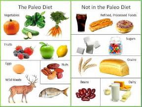 the paleo diet positivemed