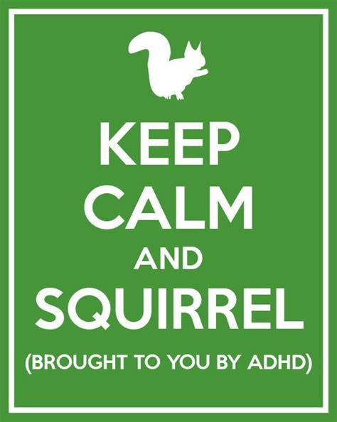 Adhd Meme - adhd squirrel meme www pixshark com images galleries