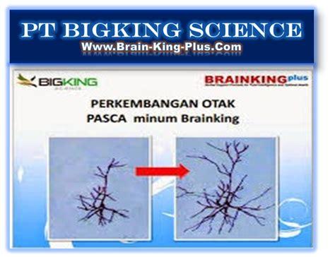 Brainking Plus Untuk Ginjal brainking plus kemasan baru pt bigking science