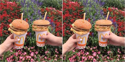 japans mcdonalds burger straws    levels  wrong