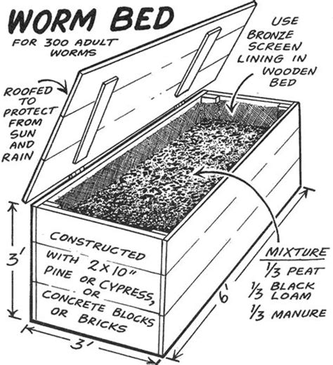 worm beds worm bed for 300 adult worms things i find yucky pinterest
