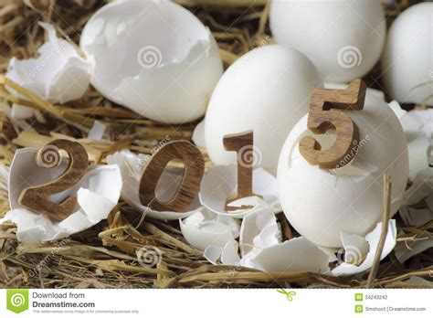new year egg happy new year 2015 eggs concept stock photography
