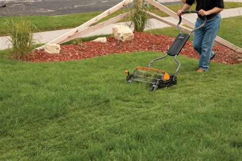 lawn care 101 the garden and patio home guide