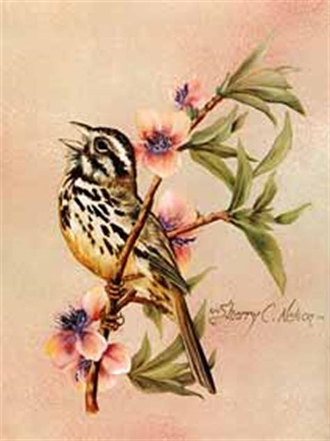 Painting Songbirds With Sherry C Nelson painting songbirds with sherry c nelson