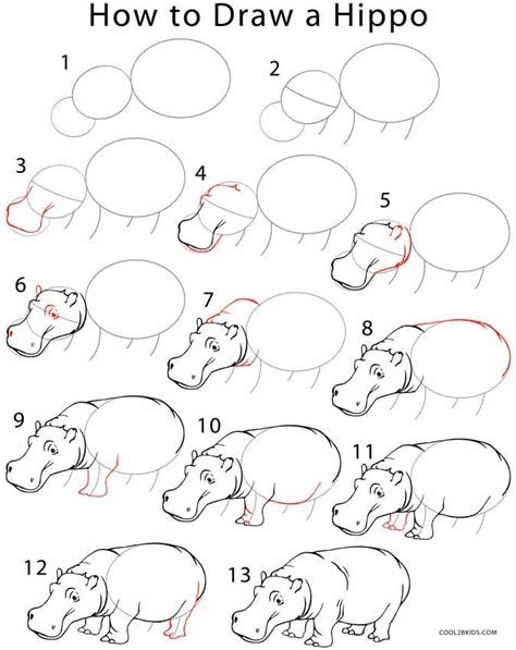 steps on how to draw doodle how to draw a hippo step by step pictures cool2bkids