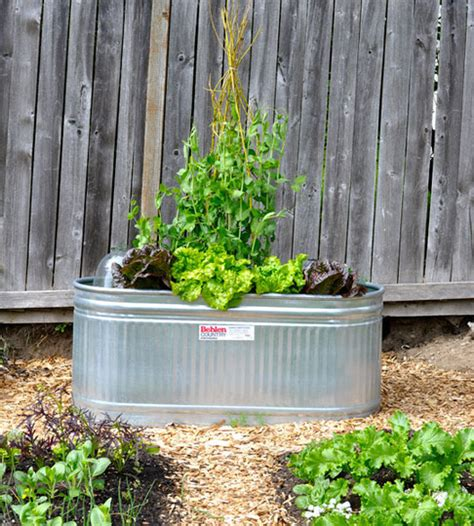 Recycled Planter by Top 30 Planters Diy And Recycled