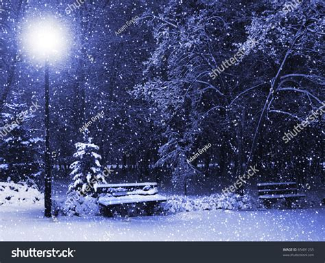 snowing lantern view bench against tree shining stock photo