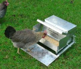 New Feeder S Feeders New Chicken Feeder Saves Feed