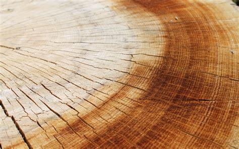 wallpaper design wood wood wallpaper cracked hd desktop wallpapers 4k hd