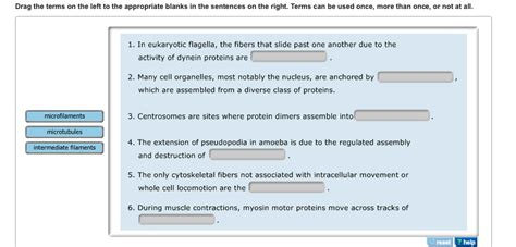 protein used in a sentence solved drag the terms on the left to the appropriate blan