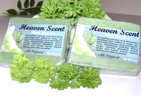 Heavenly Herbs Detox by Heaven Scent Of Dominica Magate Wildhorse