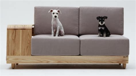 Pet Friendly Sofa by Pet Friendly Sofas Furniture With Pet Friendly Washable