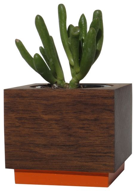modern succulent planter modern indoor pots and