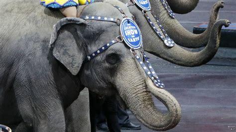 Sirkus Hukum gajah tidak lagi jadi bagian pertunjukan sirkus di amerika