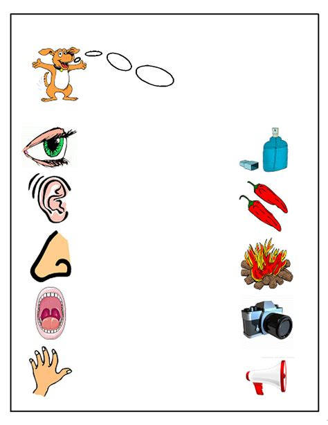 preschool five sense worksheets 2 171 funnycrafts