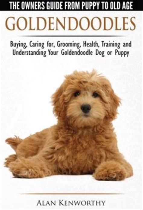 Goldendoodle The Owners Guide From Puppy To Age