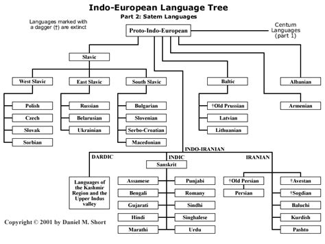 language chart the indo european family of languages