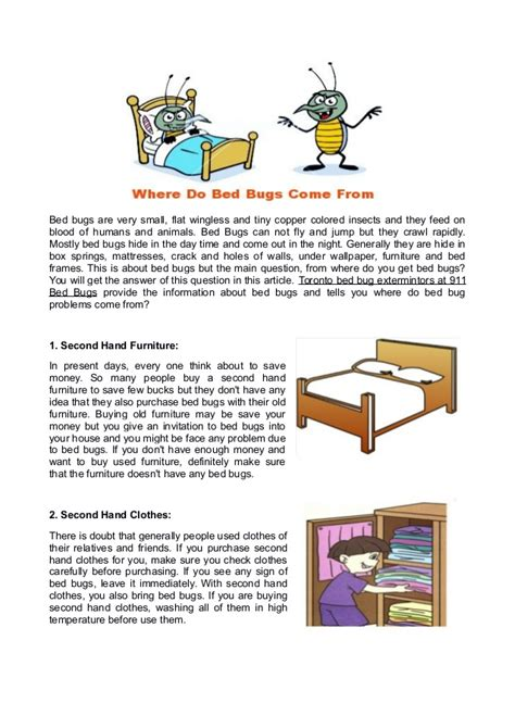 what do bed bugs come from what do bed bugs come from 28 images bed bug bugs in