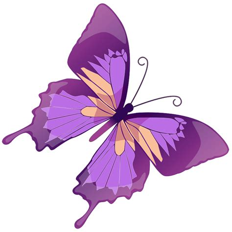 free butterfly clipart butterfly clip cliparts co