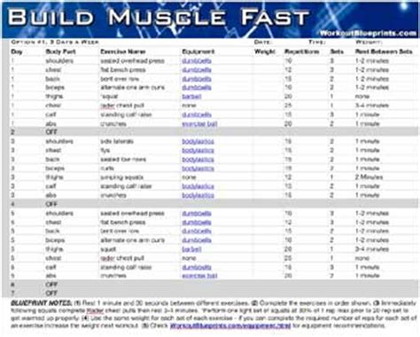 workout plans for men to build muscle at home build muscle fast workout blueprint