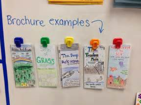 Student biome brochure video autos post