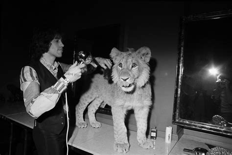 film about lion from harrods the incredible story of christian the lion