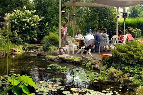 aquascape outdoor aquascape your landscape outdoor dining by the pond