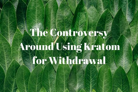How To Detox Using Kratom by The Controversy Around Using Kratom For Withdrawal