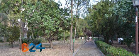 giardino botanico orari giardino botanico veneziani orari di apertura e