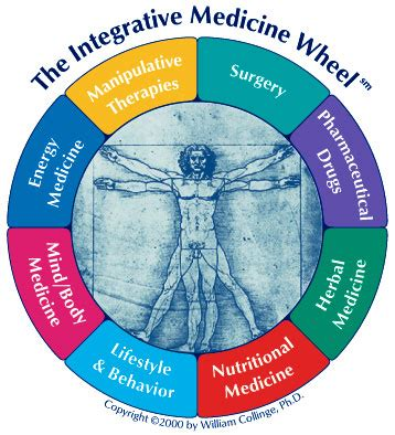 the of wellness bridging western and eastern medicine to transform your relationship with habits lifestyle and health books the integrative medicine wheel
