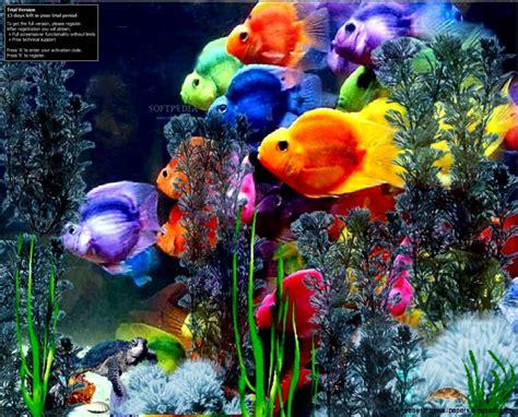 best fish screensaver microsoft fish screensaver wallpaper free best hd wallpapers
