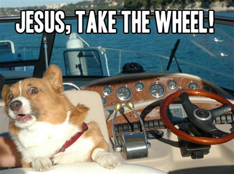 boat pictures with captions jesus take the wheel alligator sunglasses