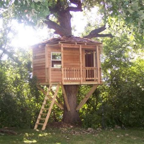 Yurt House by Chicago Illinois Tree House Pictures Of Tree Houses