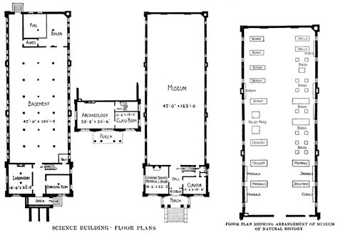 natural history museum floor plan popular science monthly volume 63 may 1903 the opportunity