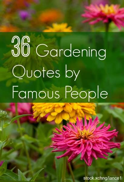 Quote Garden by Garden Sayings And Quotes Quotesgram