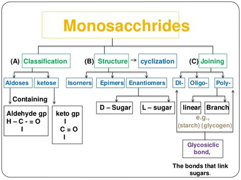 carbohydrates nomenclature carbohydrates