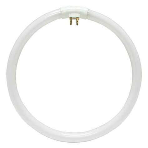 Circle Light Bulb Tubes