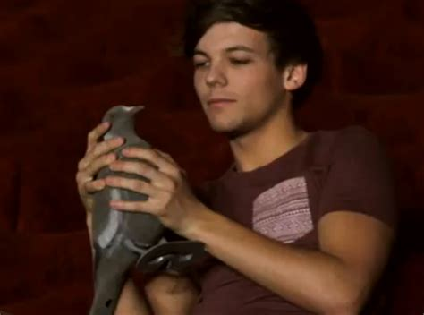 Kevin the Pigeon
