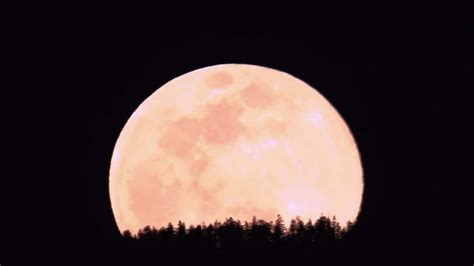 Rockford IL Weather Hour by Hour
