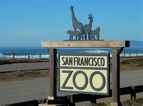 San Francisco Zoo San Francisco CA