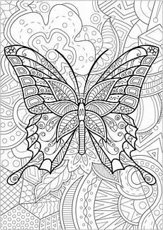 schmetterlinge und insekten 34348 schmetterlinge und