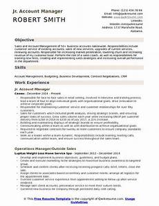 support account manager resume may 2020