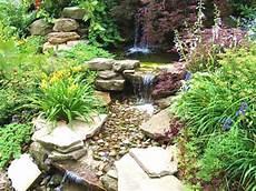Expressive Rock Garden Ideas