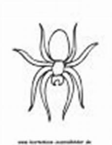 Ausmalbilder Malvorlagen Spinnen Ausmalbilder Spinne Tiere Zum Ausmalen Malvorlagen Spinnen