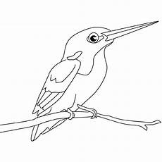 del turpial para dibujar dibujos para colorear de p 225 jaros dibujos infantiles de p 225 jaros