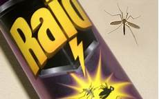 schnake im zimmer test insektenspray raid