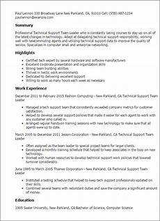 professional technical support team leader templates to